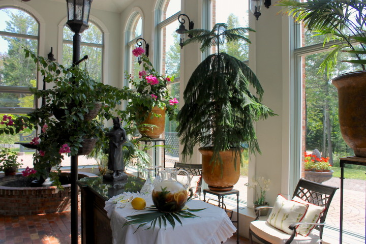 Sipping Homemade Ice Tea With Saguy Elbaz Inside a French Colonial Style House With Winter Garden