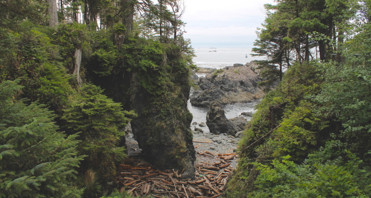 Reside Among The Eagles at This Vacation House by a Cliff in Ucluelet