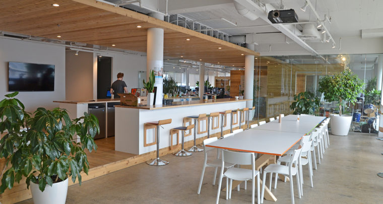 Inside the Surprisingly Zen and Green Office Space of OVH in Québec City