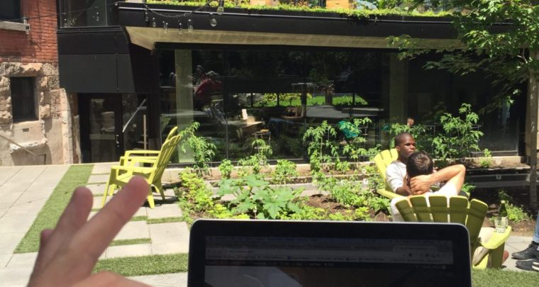 Cafe Osmo Behind Notman House is your New Favorite Remote Work Station