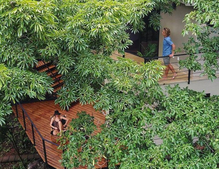 Flipping From the Branches of TreeCasa Resort, The Perfect Canopy Escape Near San Juan Del Sur